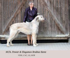 MJCh. MCh. Power & Elegance Brabus Benz
